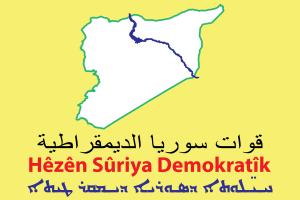 SDF-insignia